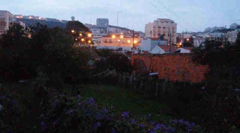 Julgados por enforcar e enterrar cão na Nazaré, Portugal