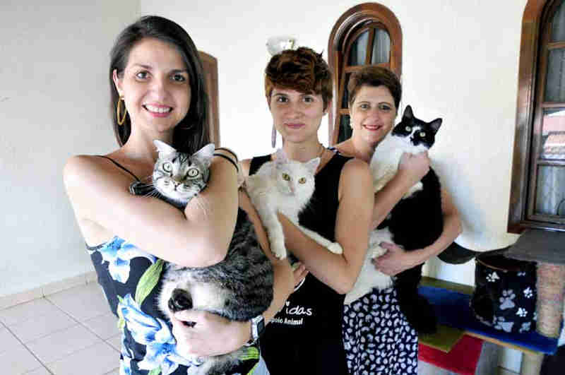 Protetores de animais buscam conscientização da comunidade em Londrina, PR