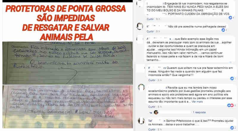 Prefeitura  intima cidadãos a se desfazerem de animais em Ponta Grossa, PR