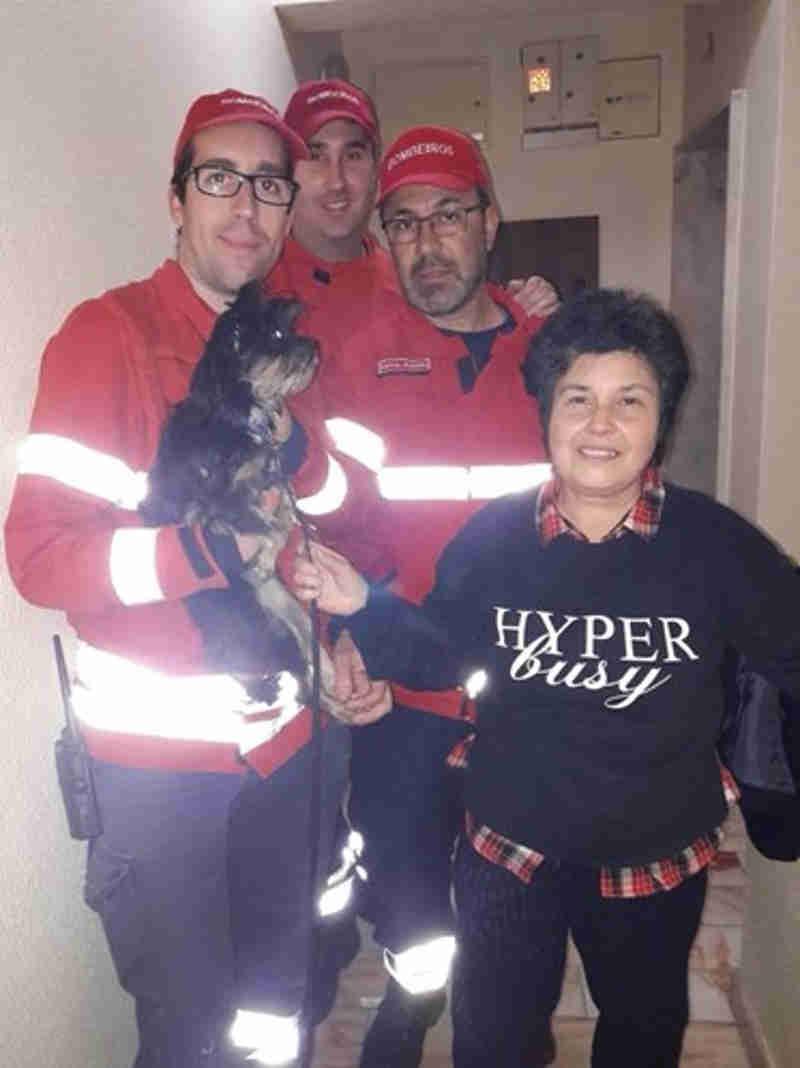 Cão salvo de elevador.
