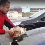 Homem foi filmado a usar gato para lavar o carro