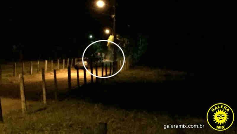 Moradores denunciam farra do boi no bairro Itinga, em Tijucas, SC