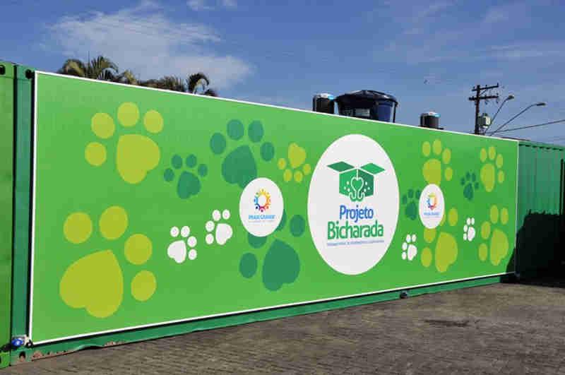 Praia Grande (SP) oferece posto móvel para castração gratuita de cães e gatos