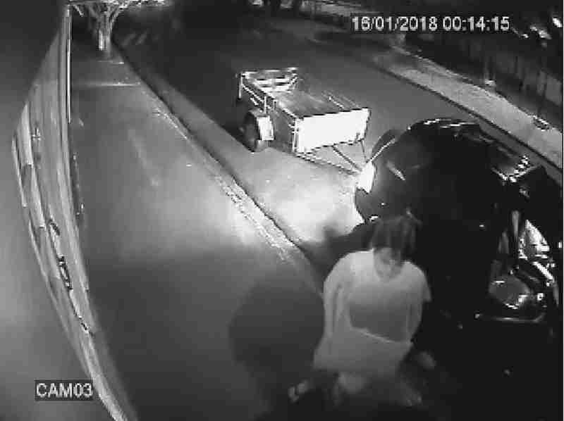 Câmera flagra homem abandonando filhotes de cães dentro de caixa em Ariranha, SP; vídeo