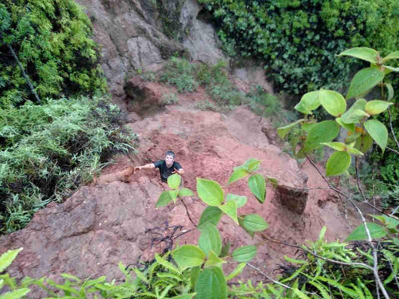 Mulher e cachorro são resgatados em ribanceira de 40 metros em Ilhabela, SP
