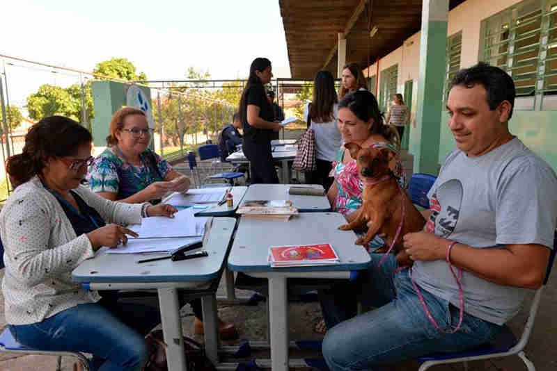 Programa gratuito de castração realiza 170 agendamentos no Jardim Novo Horizonte, em Limeira, SP