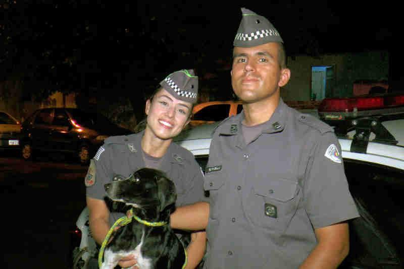 PM resgata cachorro após homem jogá-lo no lixo em Limeira, SP