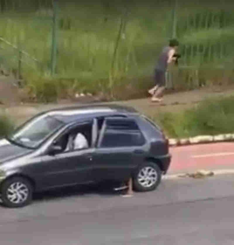 Vídeo mostra crianças abandonando cachorro na rua e gera revolta: assista