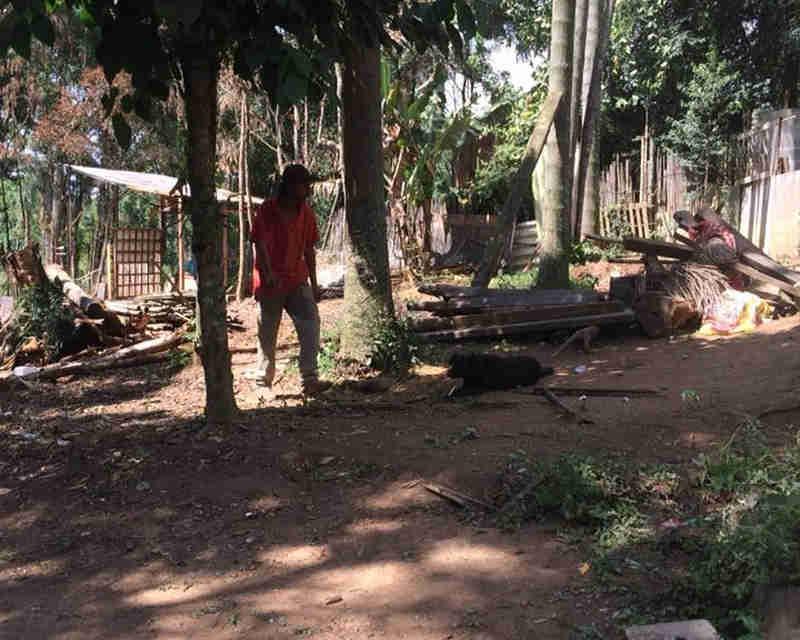Abrigo de cães carbonizados em incêndio causado por ex da dona começa a ser reconstruído