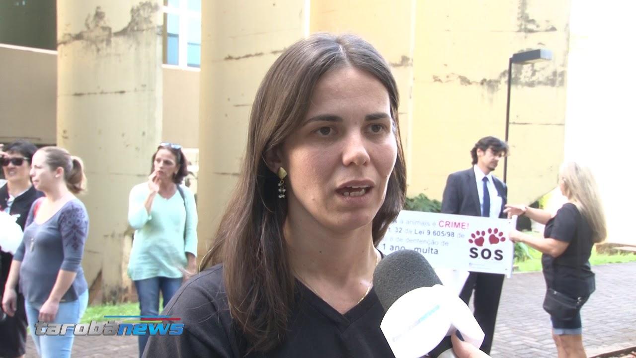 Acusado de arrastar cão é condenado a pagar multa de R$ 950 em Londrina, PR