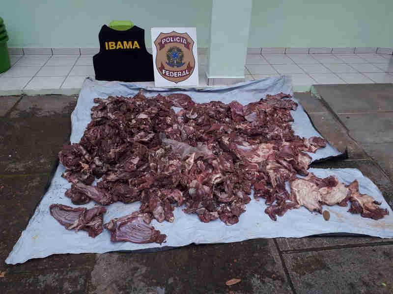 Ibama apreende 152 quilos de carne de paca, veado e porco-do-mato em canoa no interior do Acre