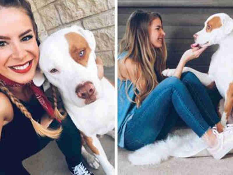 Mulher faz alerta assustador a tutores de cachorros após morte do animal