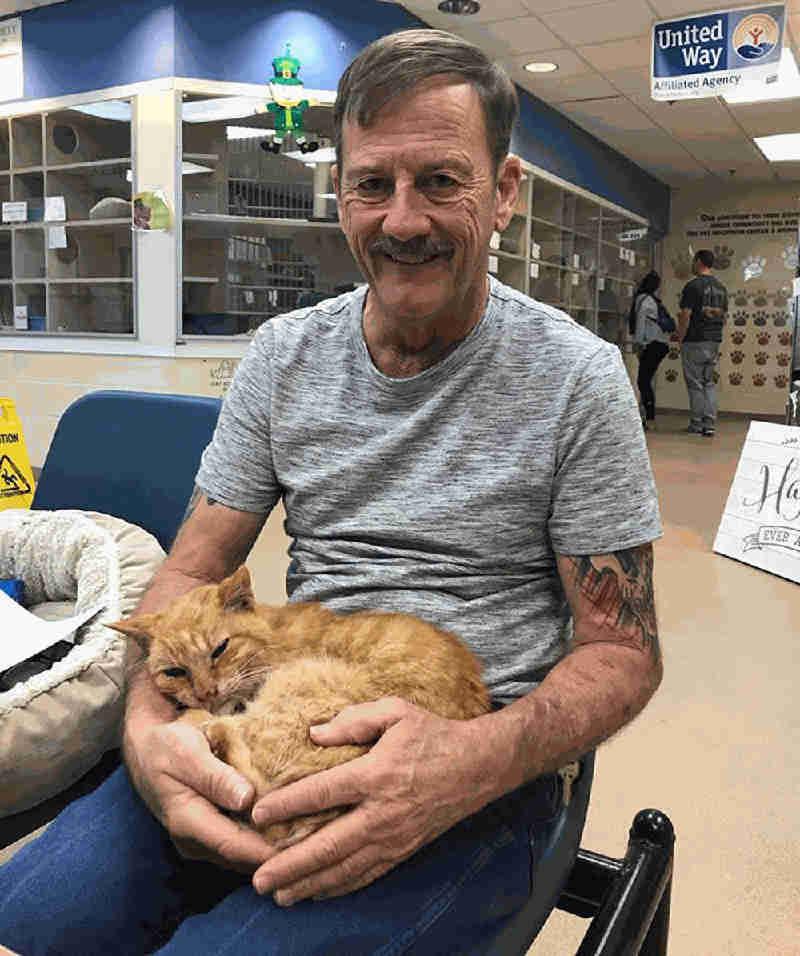 Gato reencontra tutor após passar 14 anos desaparecido nos EUA