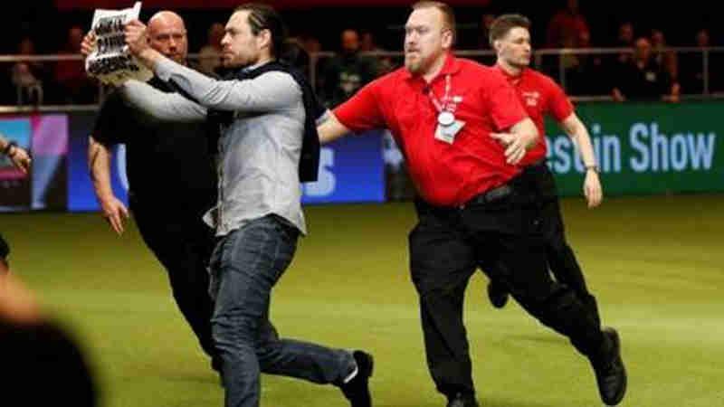 Ativistas invadem premiação do maior concurso de cães da Inglaterra