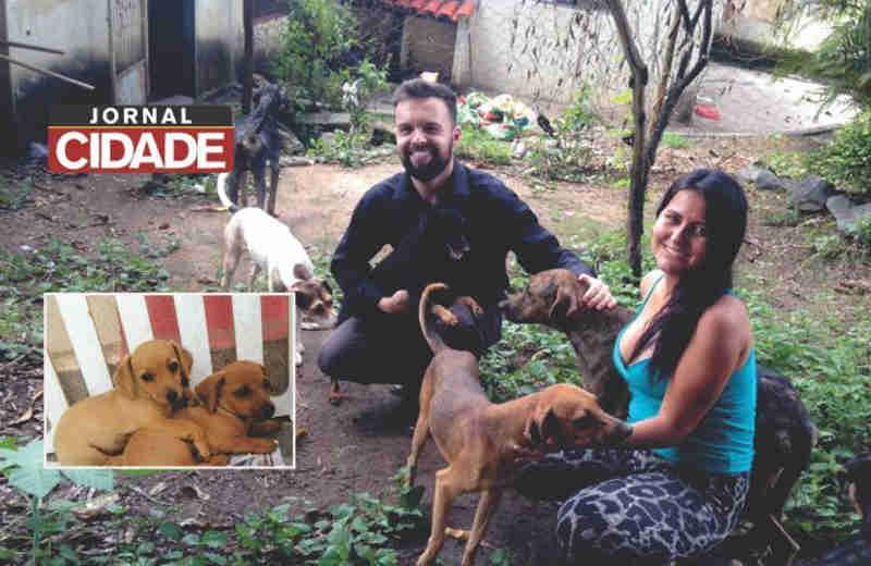 Nova ONG de proteção aos animais é criada em Lagoa da Prata, MG