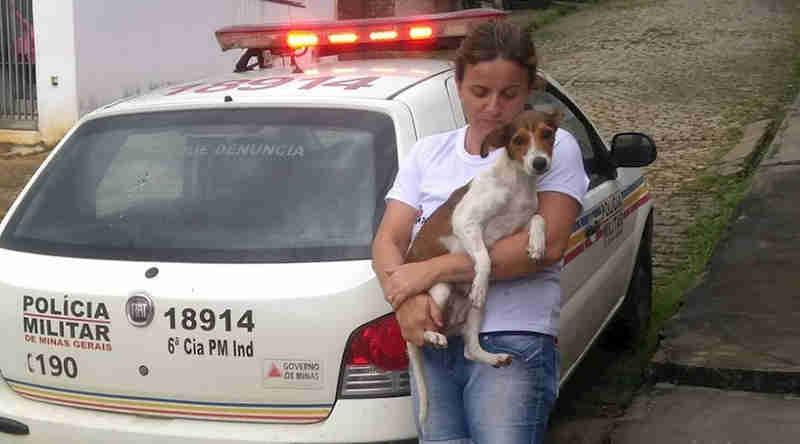 AVAC e Polícia Militar resgatam cadela abandonada em residência no Vale do Sol, em Leopoldina, MG