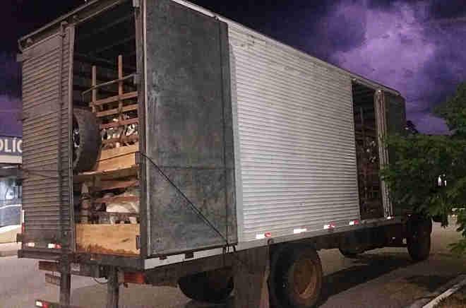 Polícia encontra 140 animais vítimas de maus-tratos em caminhão na Fernão Dias em MG