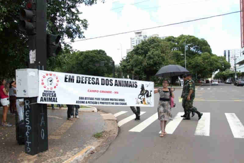 Protetores de animais protestam contra maus-tratos e impunidade em Campo Grande, MS