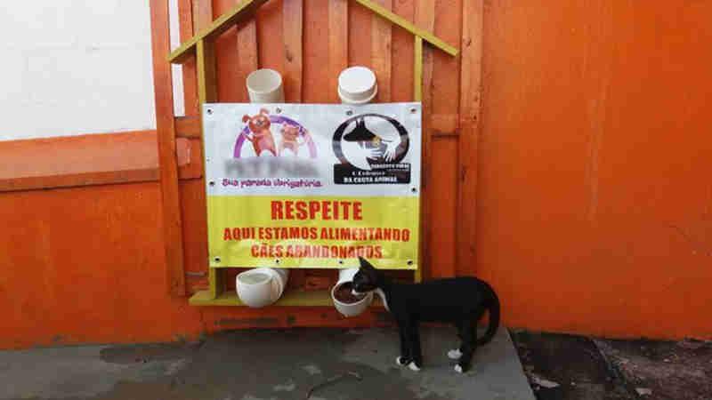 Dispositivo com ração e água de graça para cães e gatos abandonados em Cuiabá (MT) é instalado em pátio de pet shop