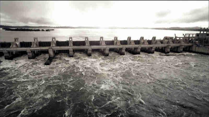 Turbinas de Belo Monte devem ser paralisadas após a morte de uma tonelada de peixes no PA