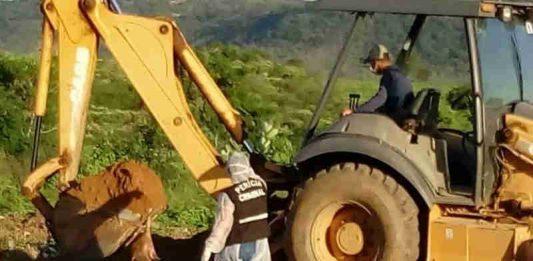 Cachorros mortos em 'chacina de Igaracy' são encontrados enterrados em lixão
