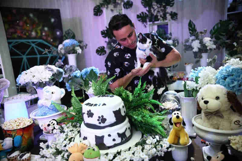 Gato ganha festa de aniversário solidária e arrecada mais de 150 kg de ração no PI