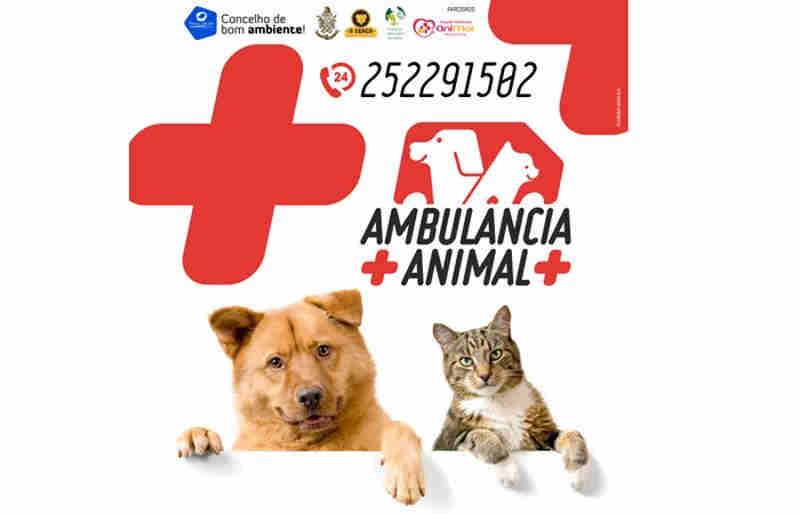 Portugal: Ambulância Animal arranca na Póvoa