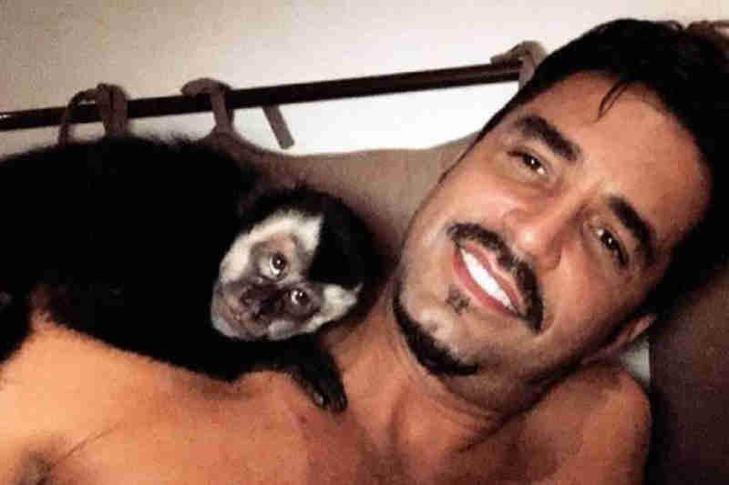 """Entidade critica Latino por causa de macaco: """"Animal silvestre não é pet"""""""