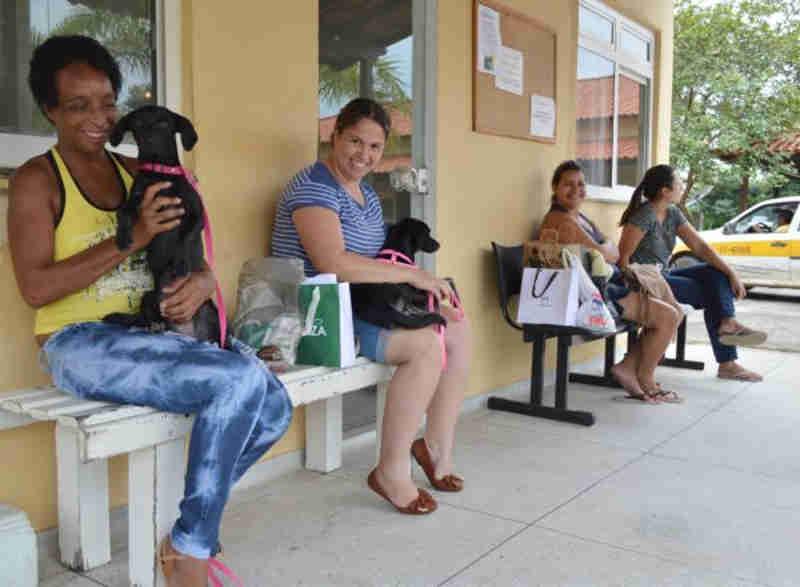 Vagas para castração para cães e gatos dobra em Volta Redonda, RJ