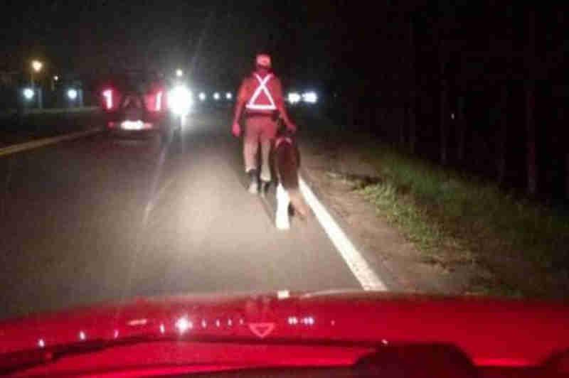 Foto: policiais resgatam pônei em estrada do RS