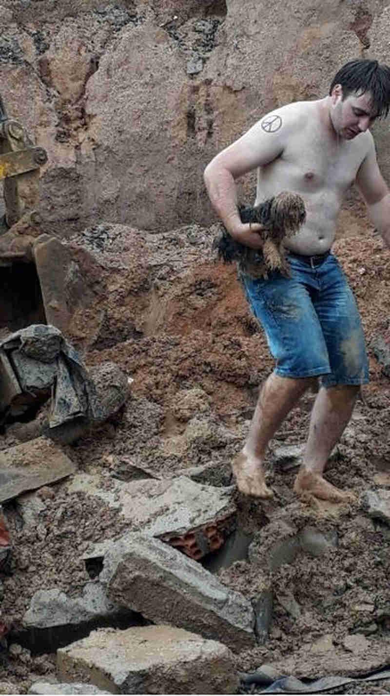 Cachorra soterrada por 18 horas é salva por bombeiros em Orleans, SC