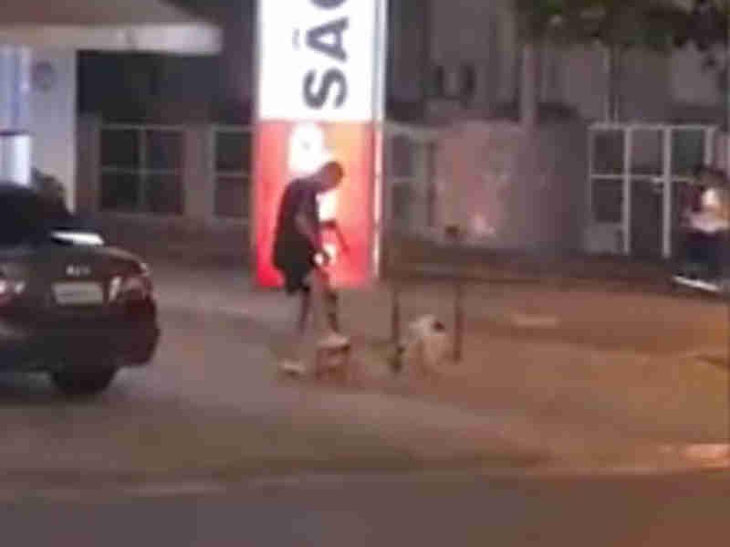 Homem pisa em cães para mantê-los sentados na frente de farmácia; vídeo