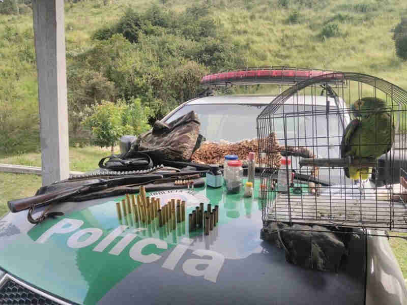 Homem é preso por caça de pássaros e porte ilegal de arma em São Luiz do Paraitinga, SP