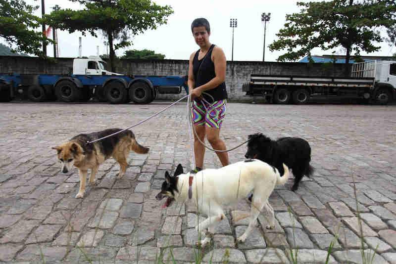 'Rolê Animal' cadastra voluntários para passear com cães em Santos, SP