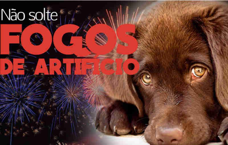 São Caetano (SP) aprova Lei de conscientização à não soltura de fogos de artifício