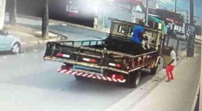 Polícia ouve dono de caminhão no caso de cães abandonados em Sorocaba, SP
