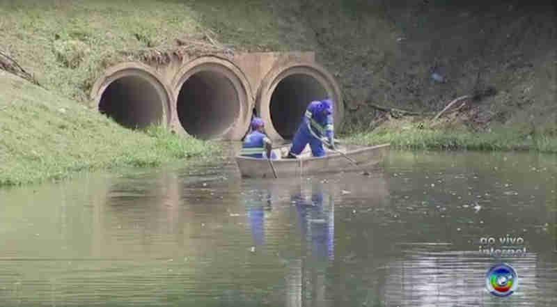 Peixes são encontrados mortos no Parque dos Espanhóis em Sorocaba, SP