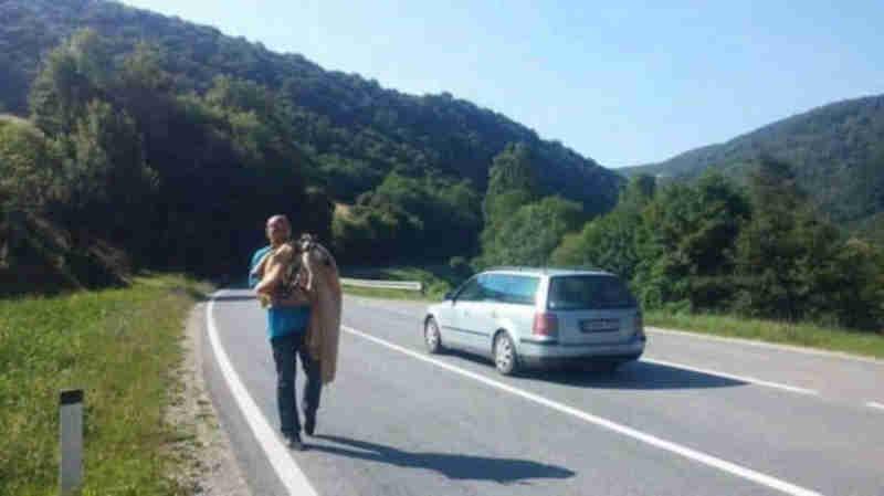 Eles pararam para resgatar um pequeno cachorro e ele os levou em direção a uma grande surpresa