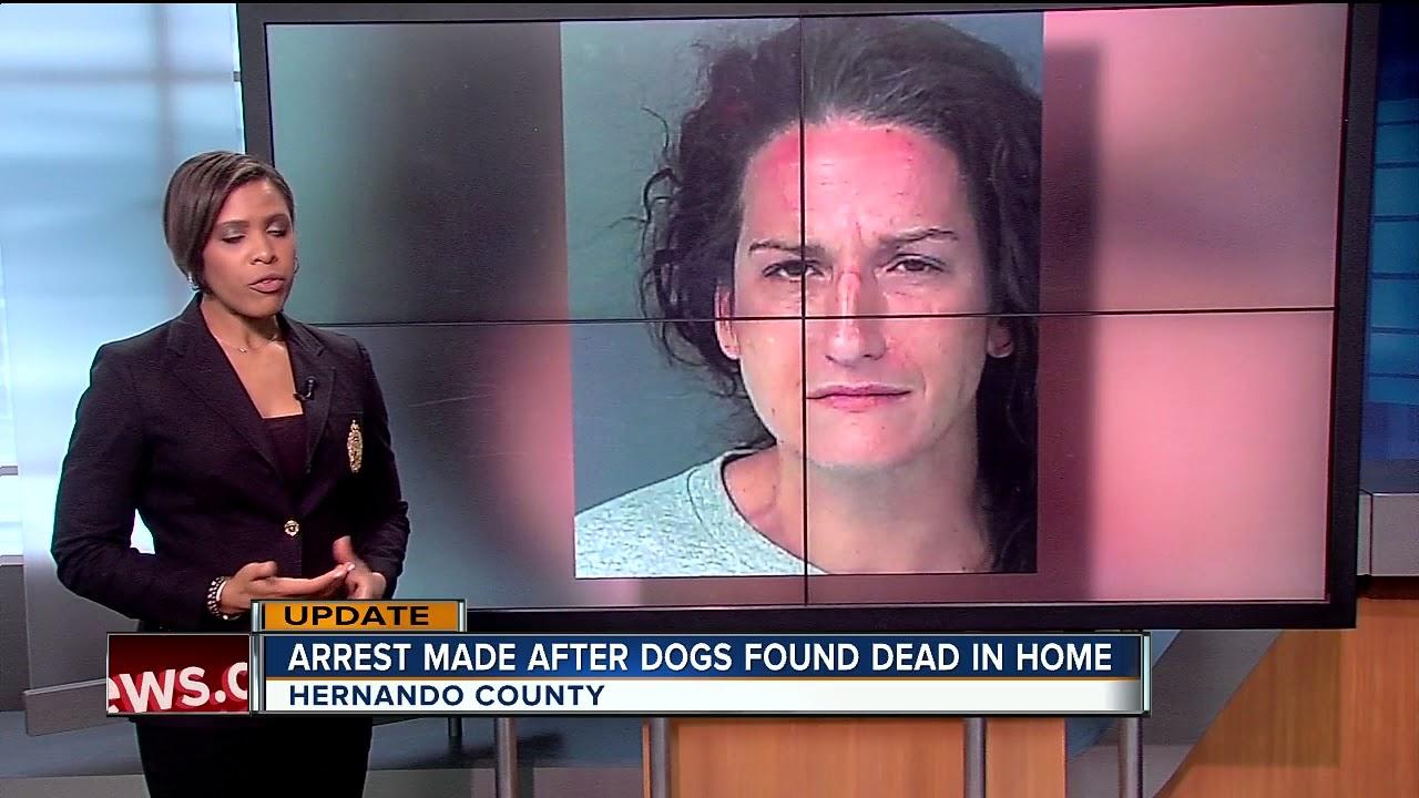 Mulher é presa após vários cães serem encontrados mortos em residência abandonada antes do furacão Irma