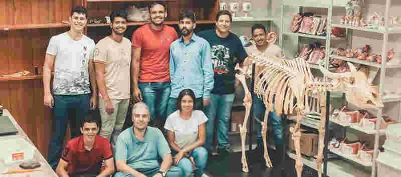 Projeto estuda uso pedagógico de cadáveres animais