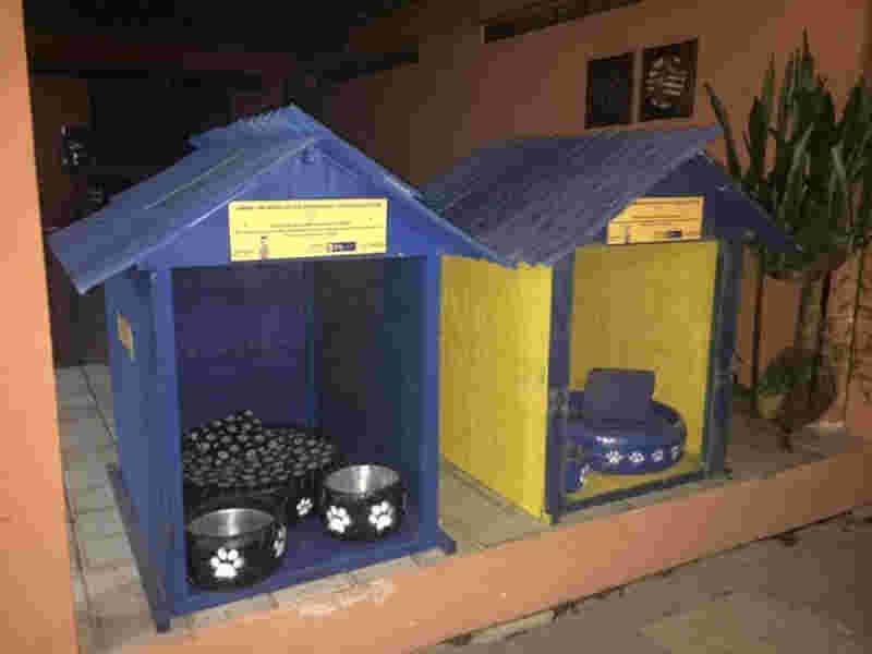 Kits serão entregues com casinha sustentável, camas, comedouro e bebedouro - FOTO: ANA CLARA MENDES