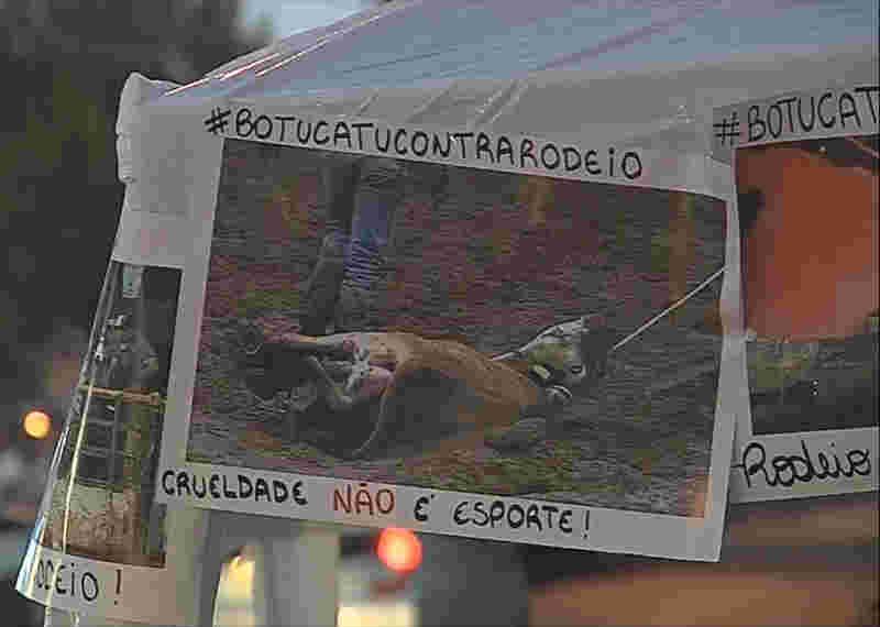 Ativistas de ONGs de proteção animal participaram da sessão e levaram cartazes contra a realização de rodeios em Botucatu (Foto: Reprodução/TV TEM)