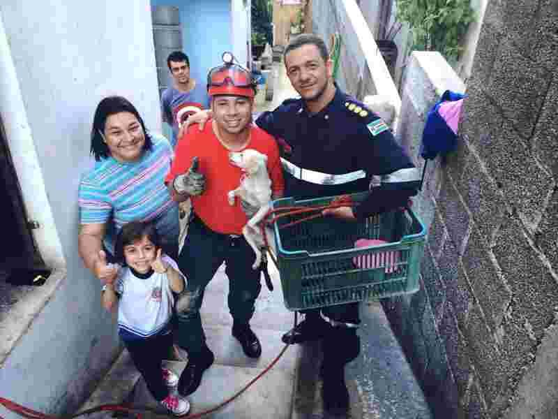 Cadela cai em poço de 20 metros e é salva por bombeiros voluntários em Várzea Paulista (Foto: Grupamento de Bombeiros Civis Voluntários/Divulgação)
