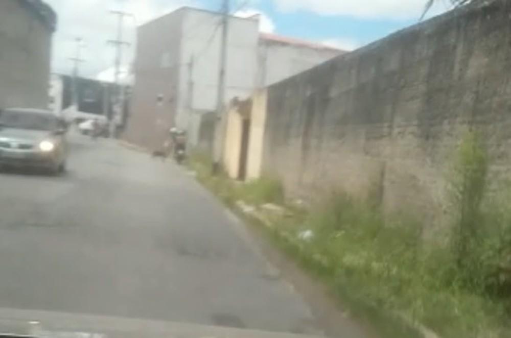 Homem foi flagrado arrastando cachorro em Fortaleza (Foto: Reprodução/TVM)