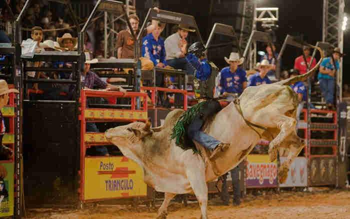 Audiência deverá debater atividades esportivas que envolvem manejo de animais, como os rodeios. (Foto: Érico Andrade/G1)