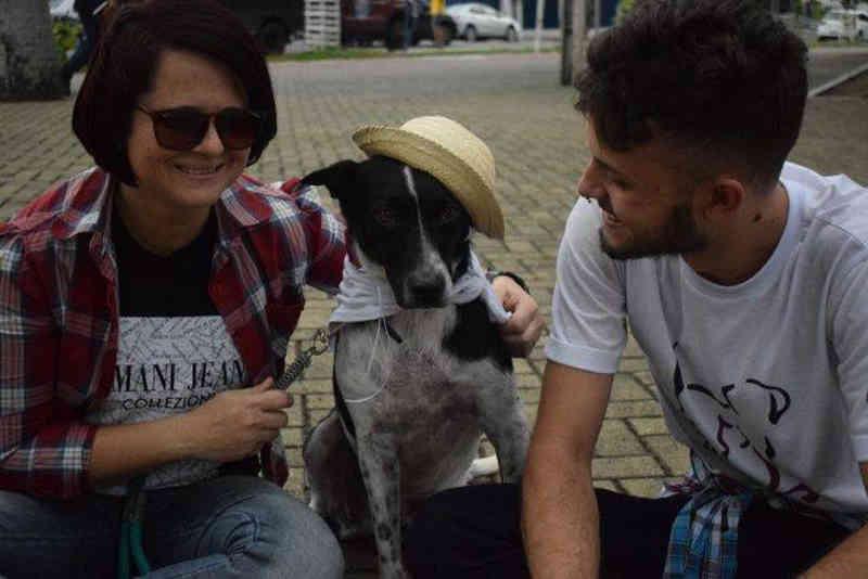 Um passeio de quatro patas: o cuidado e a adoção de animais de rua em Campina Grande, PB