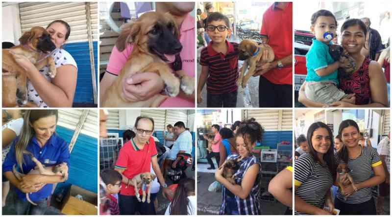 31 animais foram adotados em evento promovido pela ONG Adota Patos, na PB