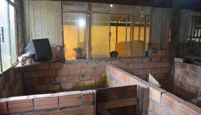 Fotos: Polícia Civil Divulgação