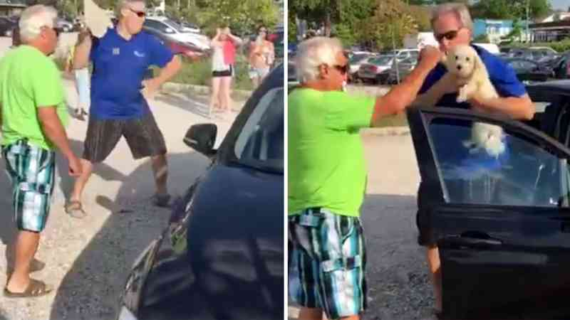Partiu o vidro para salvar dois cães e foi multado