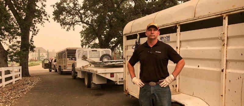 Voluntários salvam animais de incêndios nos EUA
